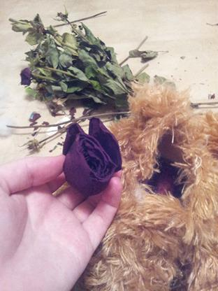 rose-heads-in-teddy-bear-what-to-do-with-dry-flowers