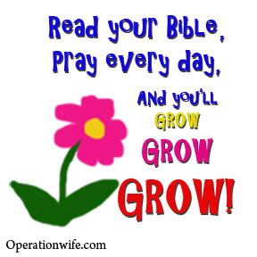 read-your-bible-pray-every-day