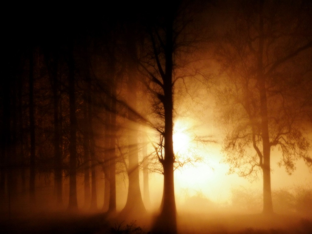 light- in-darkness